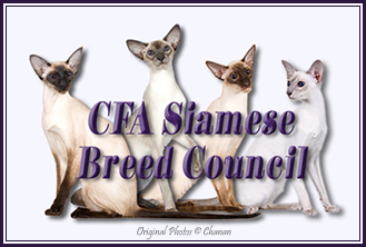 CFA Siamese Breed Council